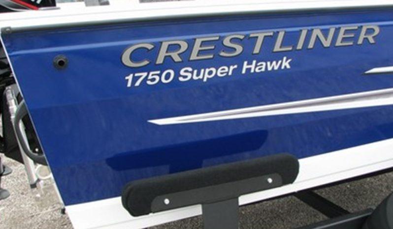 Coming Soon 2021- 1750 Super Hawk w/150 Mercury full